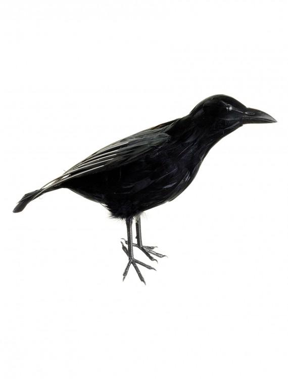 15 Inch Crow Prop, halloween costume (15 Inch Crow Prop)