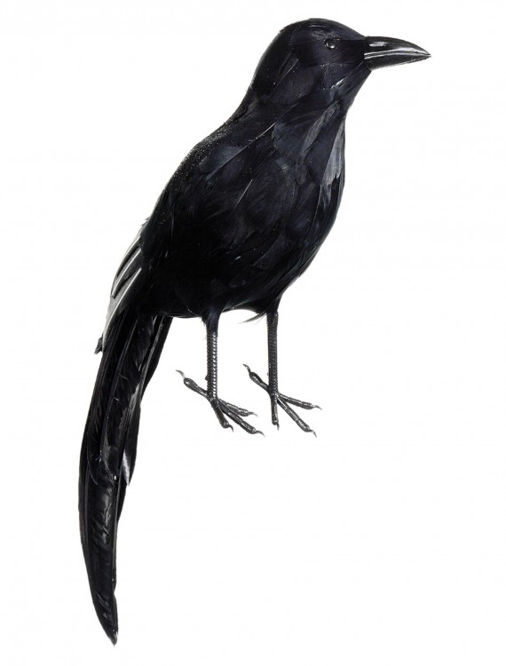 "20"" Glittered Raven, halloween costume (20"" Glittered Raven)"