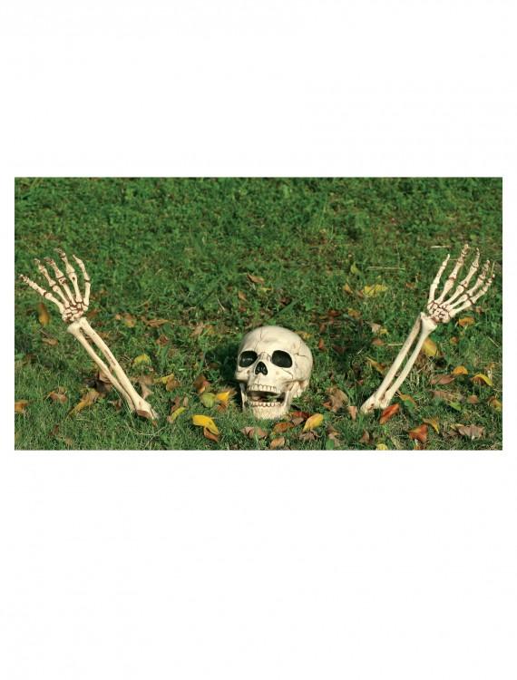 3 Piece Buried Alive Skeleton Kit, halloween costume (3 Piece Buried Alive Skeleton Kit)