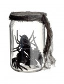 5.5 Inch Glass Jar w/spiders, halloween costume (5.5 Inch Glass Jar w/spiders)