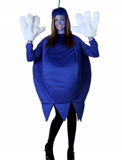 Adult Blueberry Costume, halloween costume (Adult Blueberry Costume)