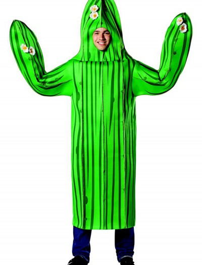 Adult Cactus Costume, halloween costume (Adult Cactus Costume)