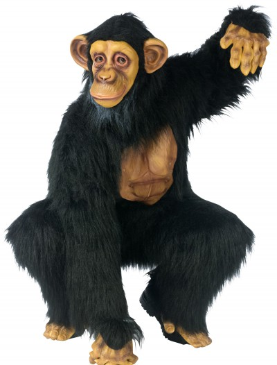 Adult Chimpanzee Costume, halloween costume (Adult Chimpanzee Costume)