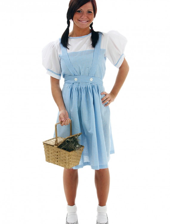 Adult Kansas Girl Costume Dress, halloween costume (Adult Kansas Girl Costume Dress)