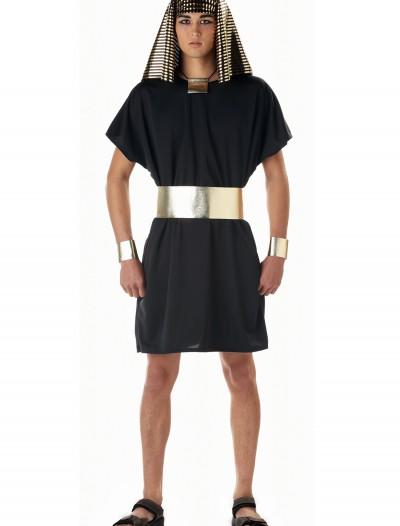 Adult Egyptian Pharaoh Costume, halloween costume (Adult Egyptian Pharaoh Costume)