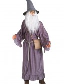 Adult Gandalf Costume, halloween costume (Adult Gandalf Costume)