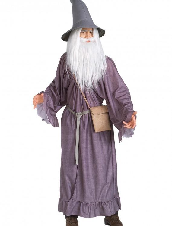 Adult Gandalf Costume, halloween costume (Adult Gandalf Costume)