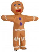 Adult Gingerbread Man Costume, halloween costume (Adult Gingerbread Man Costume)