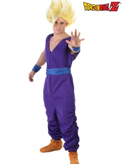 Adult Gohan Costume, halloween costume (Adult Gohan Costume)
