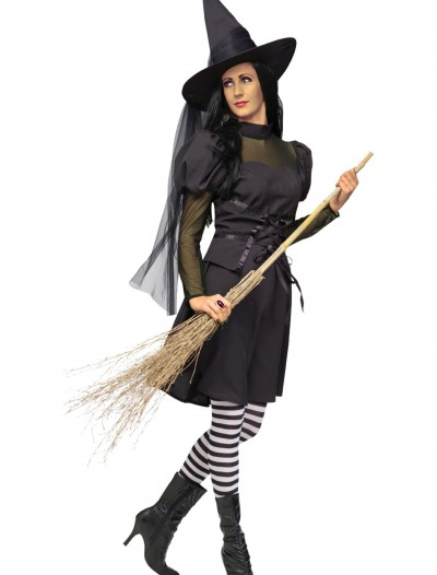 Adult Ms. Witch Costume, halloween costume (Adult Ms. Witch Costume)