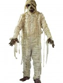 Adult Mummified Costume, halloween costume (Adult Mummified Costume)