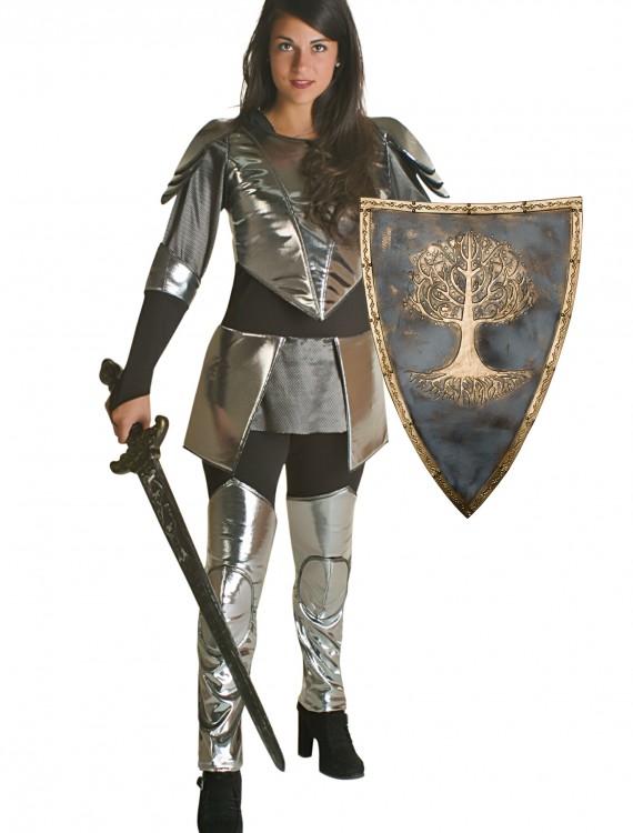 Adult Princess Warrior Costume, halloween costume (Adult Princess Warrior Costume)