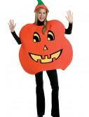 Adult Pumpkin Costume, halloween costume (Adult Pumpkin Costume)