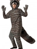 Adult Raccoon Costume, halloween costume (Adult Raccoon Costume)