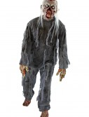 Adult Rotting Costume, halloween costume (Adult Rotting Costume)