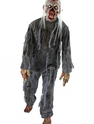 Adult Rotting Costume, halloween costume (Adult Rotting Costume)