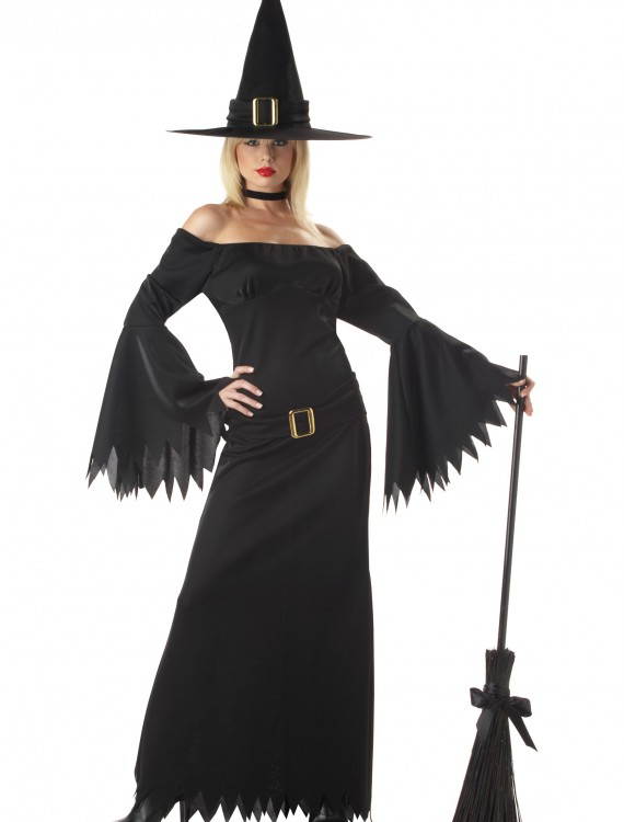 Adult Sexy Witch Costume, halloween costume (Adult Sexy Witch Costume)