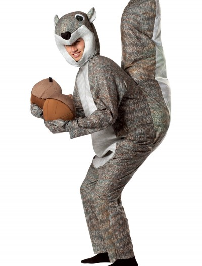 Adult Squirrel Costume, halloween costume (Adult Squirrel Costume)