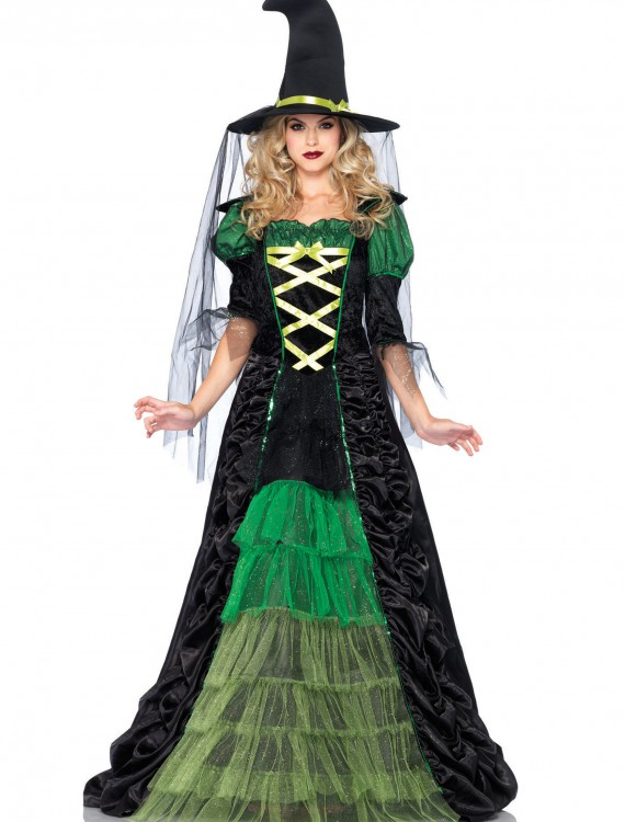 Adult Storybook Witch Costume, halloween costume (Adult Storybook Witch Costume)