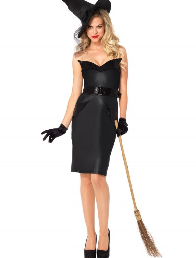 Adult Vintage Witch Costume, halloween costume (Adult Vintage Witch Costume)