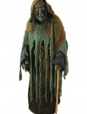 Adult Witch Costume, halloween costume (Adult Witch Costume)