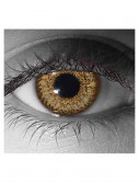Hazel Contact Lenses, halloween costume (Hazel Contact Lenses)
