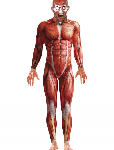 Anatomy Man Costume, halloween costume (Anatomy Man Costume)