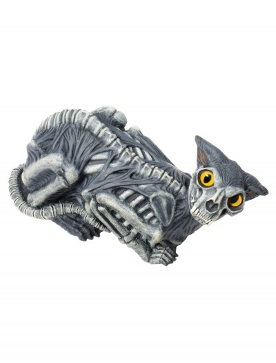 Animated Zombie Cat, halloween costume (Animated Zombie Cat)