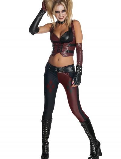 Arkham City Harley Quinn Costume, halloween costume (Arkham City Harley Quinn Costume)