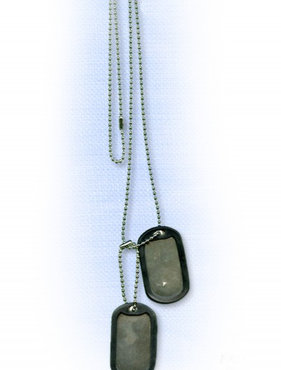 Army Dog Tags, halloween costume (Army Dog Tags)