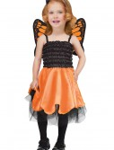 Baby Butterfly Costume, halloween costume (Baby Butterfly Costume)