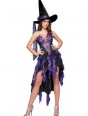 Bewitching Beauty Costume, halloween costume (Bewitching Beauty Costume)