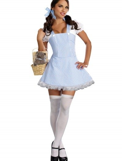 Blue Gingham Dress Costume, halloween costume (Blue Gingham Dress Costume)
