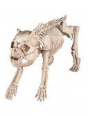 Bones the Hungry Hound Skeleton Dog, halloween costume (Bones the Hungry Hound Skeleton Dog)