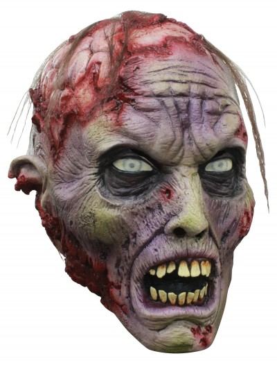 Brains! Zombie Mask, halloween costume (Brains! Zombie Mask)