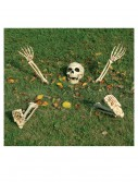 5 Piece Buried Alive Skeleton Kit, halloween costume (5 Piece Buried Alive Skeleton Kit)