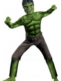Child Avengers Hulk Costume, halloween costume (Child Avengers Hulk Costume)