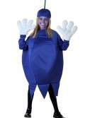 Child Blueberry Costume, halloween costume (Child Blueberry Costume)