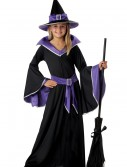 Child Glamour Witch Costume, halloween costume (Child Glamour Witch Costume)