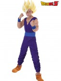 Child Gohan Costume, halloween costume (Child Gohan Costume)