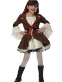Child Pirate Princess Costume, halloween costume (Child Pirate Princess Costume)
