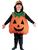 Child Pumpkin Costume, halloween costume (Child Pumpkin Costume)