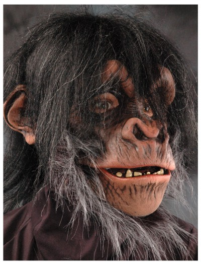 Chimp Mask, halloween costume (Chimp Mask)