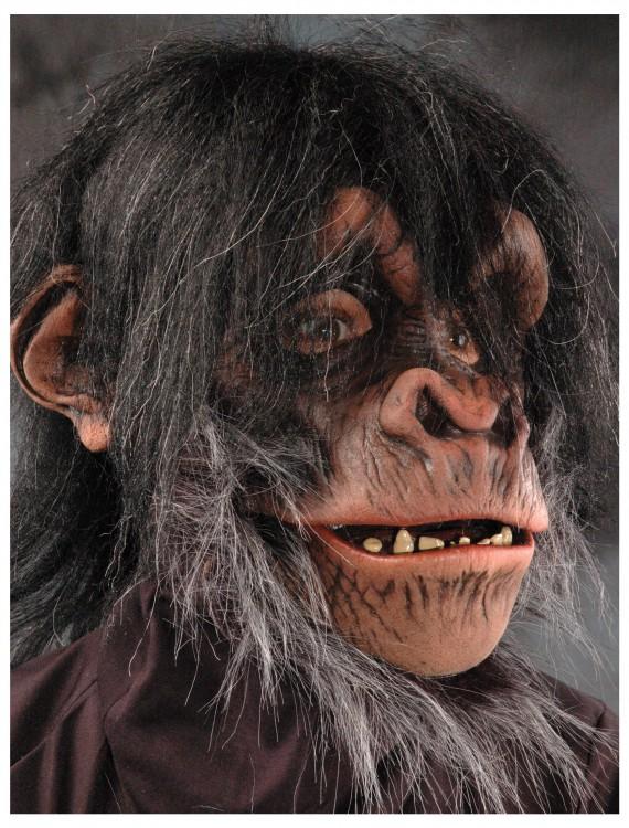 Chimp Mask, halloween costume (Chimp Mask)