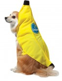 Chiquita Banana Dog Costume, halloween costume (Chiquita Banana Dog Costume)