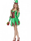 Christmas Elfin Magic Costume, halloween costume (Christmas Elfin Magic Costume)