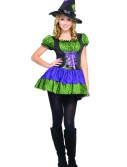 Colorful Teen Witch Costume, halloween costume (Colorful Teen Witch Costume)