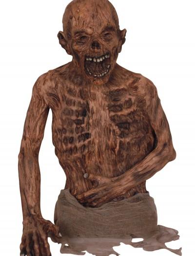 Corpse Torso, halloween costume (Corpse Torso)