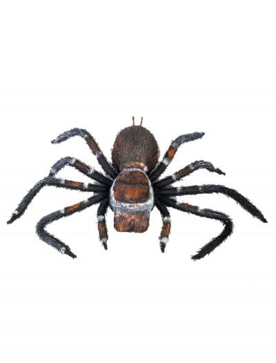 Creepy Crawler Tarantula, halloween costume (Creepy Crawler Tarantula)