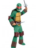 Deluxe Child Raphael Costume, halloween costume (Deluxe Child Raphael Costume)